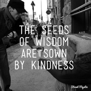 208 Relax and Succeed - The seeds of wisdom