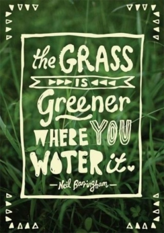 236 Relax and Succeed - The grass is greener