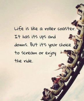 325 Relax and Succeed - Life is like a roller coaster