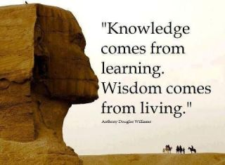 351 Relax and Succeed - Knowledge comes from learning