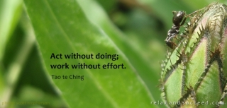 386 Relax and Succeed - Act without doing