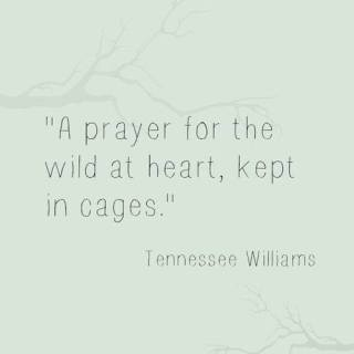 729 Relax and Succeed - A prayer for the wild at heart