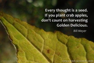 849 Relax and Succeed - Every thought is a seed