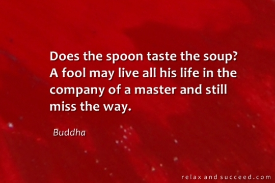 996 Relax and Succeed - Does the spoon taste the soup